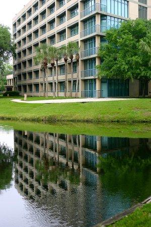 Sawgrass Marriott Golf Resort & Spa: Pretty lakes