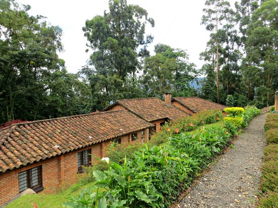 Gisakura Guest House: The guest house and garden