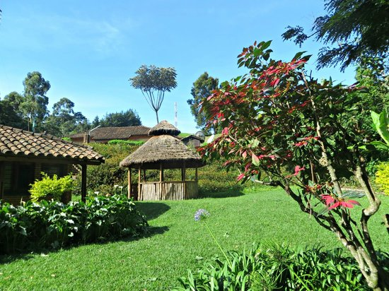 Gisakura Guest House: The guest house and garden