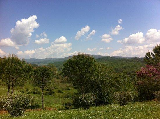 Agriturismo San Ottaviano: La vista
