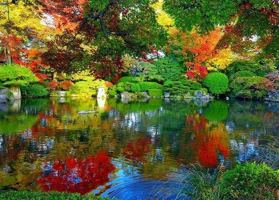 Yamagata, Japón: 心が癒されます