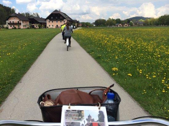 Fraulein Maria's Bicycle Tours : Biking along!