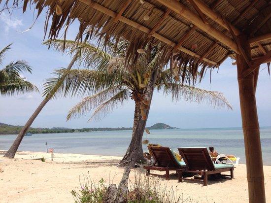 Centra Coconut Beach Resort Samui: Beach April 2014