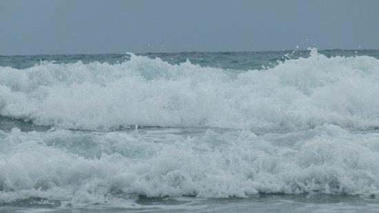 Wild Beach Resort and Spa: море
