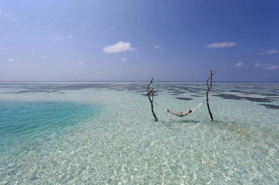Gili Lankanfushi Maldives : Private Residence