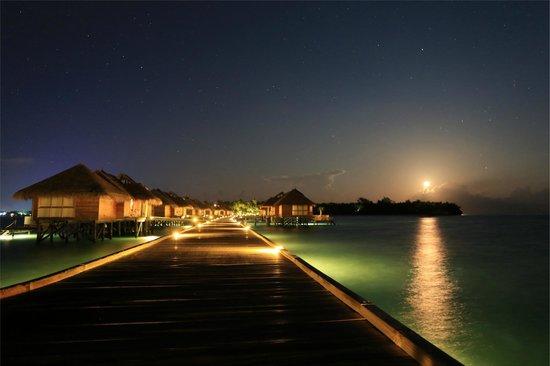 Gili Lankanfushi Maldives : Full Moon