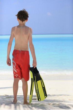 Gili Lankanfushi Maldives : Beach
