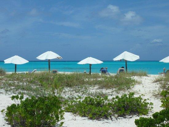 Club Med Columbus Isle: la plage au loin