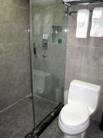 Beijing Jianguo Hotel : shower and toilet