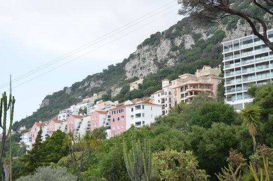 Gibraltar Botanic Gardens (The Alameda): The Rock