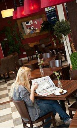 Fron Goch Garden Centre & Restaurant: relax with a fresh coffee, moist cake & newspaper (also free wifi)