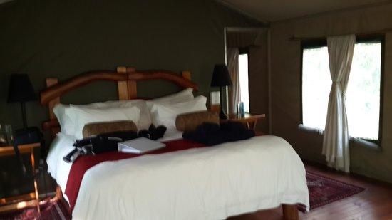 Black Leopard Camp: our room
