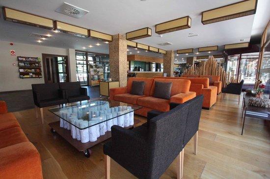 Hotel Aneto : Entrada y recepción