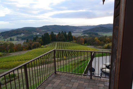 Youngberg Hill Vineyards & Inn : another view from balcony