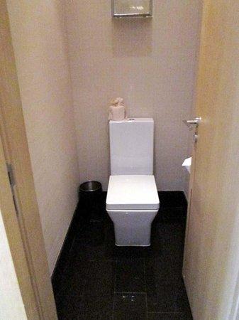 Hotel Kapok Shenzhen Bay : toilet room