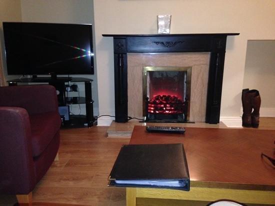 PREMIER SUITES PLUS Dublin Leeson Street: le salon avec la cheminée electrique