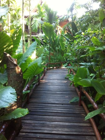 Somkiet Buri Resort: step into rooms surround by trees