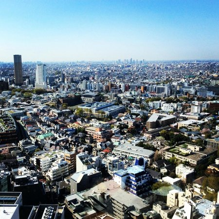 Cerulean Tower Tokyu Hotel: morning view