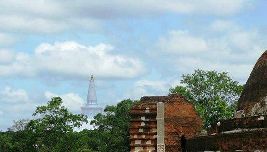 Ruwanwelisseya Dagoba : view from Jethawanaramaya Stupa