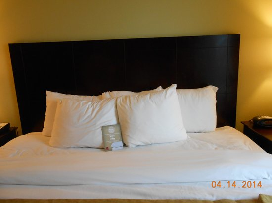Comfort Suites Harvey : King Bed
