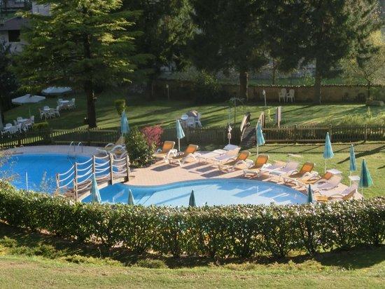 Hotel Garden: Garden