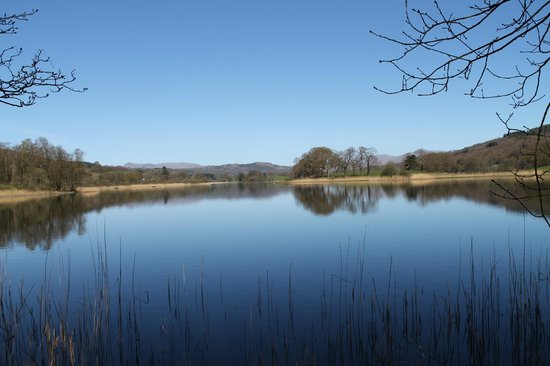 Esthwaite water trout fishery: lovely view