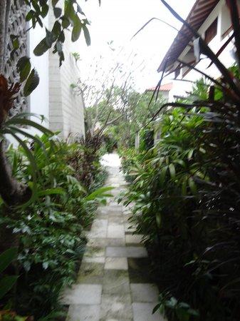 Sudamala Suites & Villas: passages in het hotel