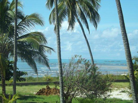 Salinas Maragogi All Inclusive Resort: Vista da nossa suite\ suíte  praia