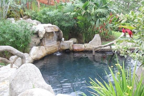 Hotel El Silencio del Campo: one of the hot springs on the property.