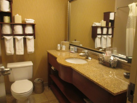 Hampton Inn Provo: Bathroom