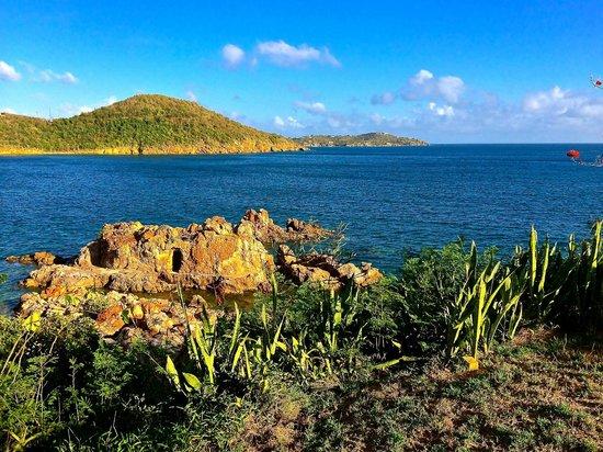 Lindbergh Bay Hotel and Villas : The Caribbean Sea