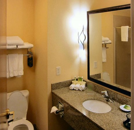 Holiday Inn Express Hotel & Suites Mount Airy South: Bathroom