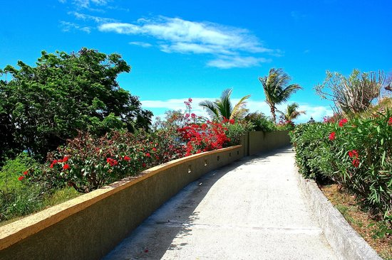 Lindbergh Bay Hotel and Villas: Private walkway up to the villas