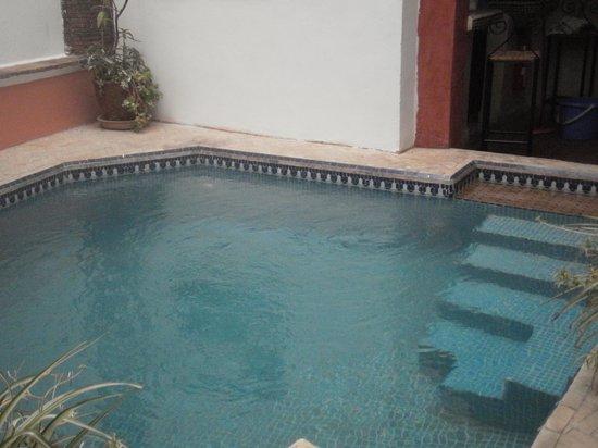 Riad Dar Palmyra: la piscine