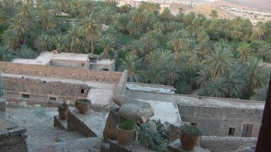 Dar Infiane: Environnement de l'hôtel