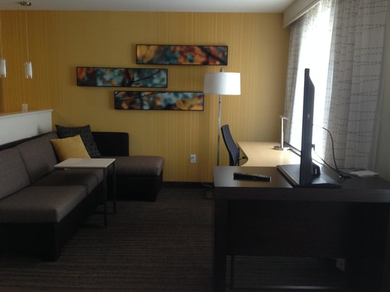 Residence Inn by Marriott Denver Cherry Creek: Studio Living space