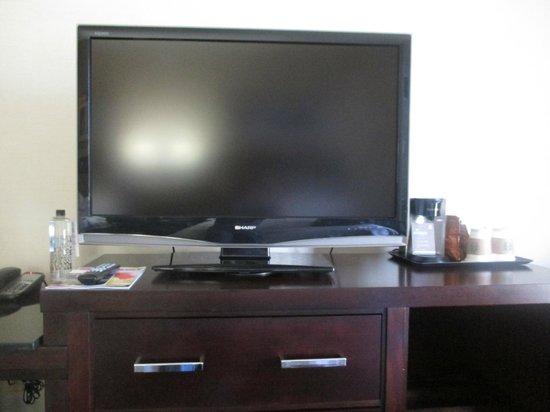 Sheraton Salt Lake City Hotel: Room TV