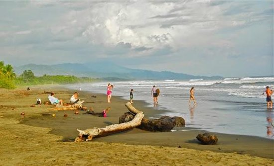 Playa Matapalo: Matapalo Beach
