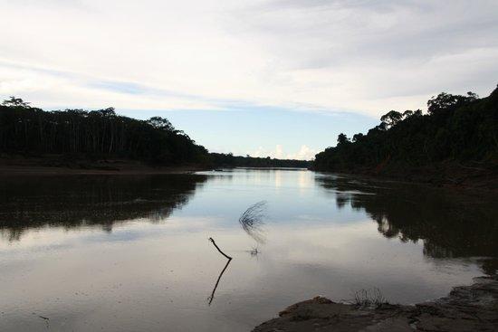Refugio Amazonas: River