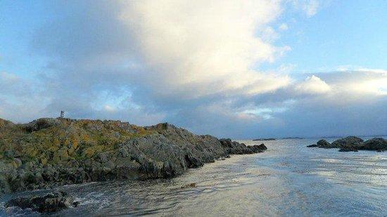 Faro Les Eclaireurs: Habitat natural dos animais marinhos.