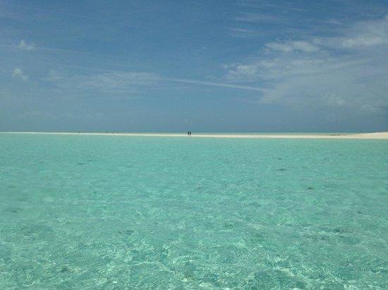 Staniel Cay Yacht Club : Osprey Cay