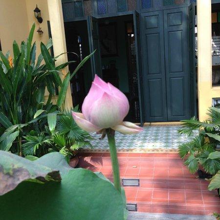 Baan Pra Nond Bed & Breakfast: Lovely front garden