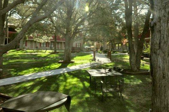 Best Western Pine Springs Inn: Um den Innenhof liegen die Hotelzimmer