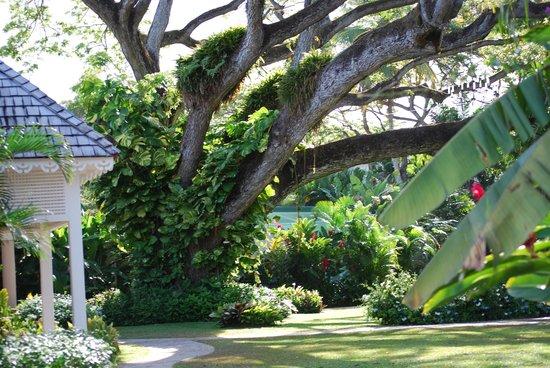 Rendezvous Resort: beautiful grounds