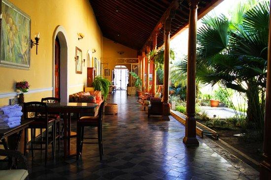 Casa Xanadu: courtyard