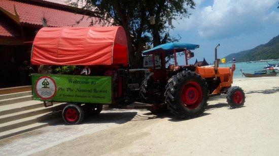 Phi Phi Natural Resort : truck