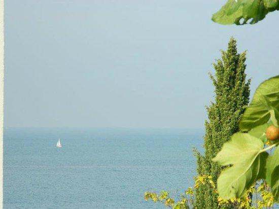 Laguna Molindrio Hotel: Адриатическое море