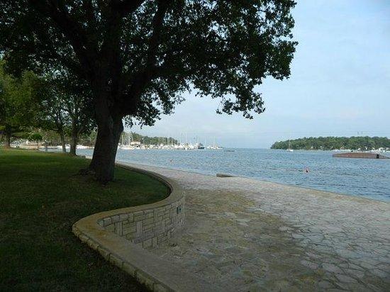 Laguna Molindrio Hotel: Набережная в 2 минутах ходьбы от отеля