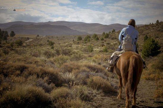 Cabalgatas & Aventura ArianePatagonia: Ariane Patagonia