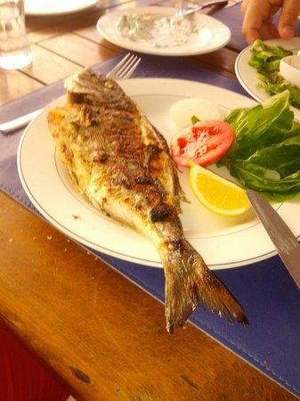 Pinar Balik Marketim Restaurant